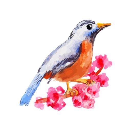 Water Color Birds
