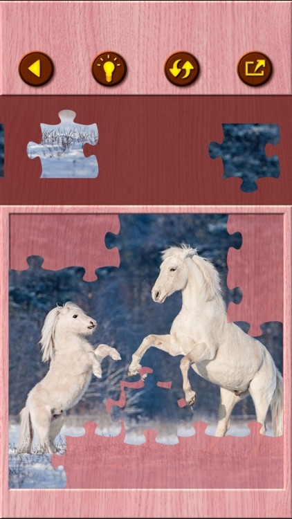 Horse Jigsaw Puzzle Games screenshot-7