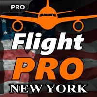 Codes for Pro Flight Simulator New York Hack