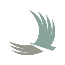 Vista Bank Mobile for iPad