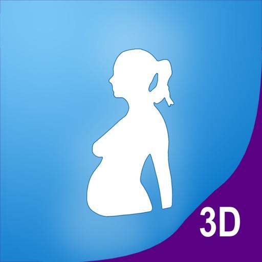 Я беременна 3D