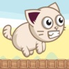 Angry Cat - Endless runner game