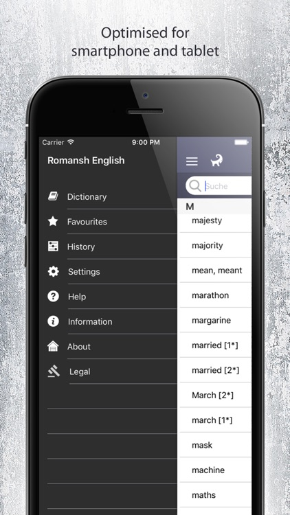 Dictionary Romansh English screenshot-4