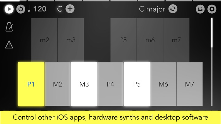 Navichord • chord sequencer screenshot-5