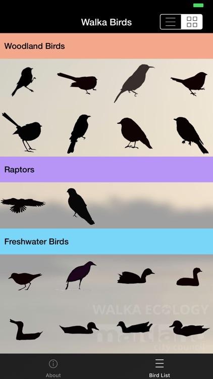 Walka Birds