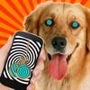 犬の催眠術のシミュレーターのジョーク