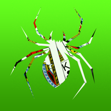 Spider Solitaire - Free Classic Fun Card Strategy SpiderSolitaire Game with Old School Playing Cards