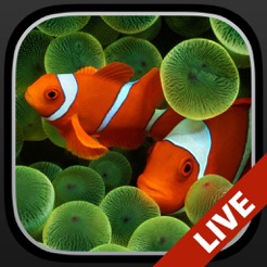 Aquarium Dynamic Wallpapers 4+. Live Lock Screen Backgrounds