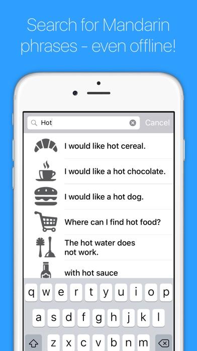 English to Mandarin Chinese Screenshot on iOS