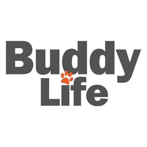 Buddy Life icon