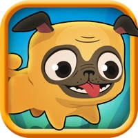 Codes for Pug Run Hack