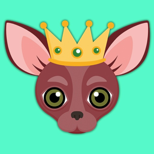 Animated Red Chihuahua