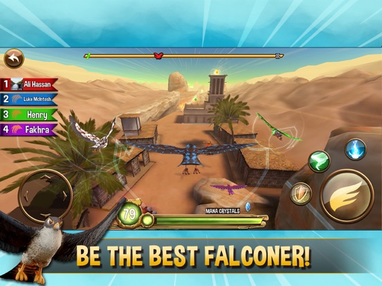 Falcon Valley Multiplayer Race для iPad