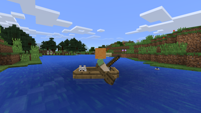 Screenshot for Minecraft in Mexico App Store