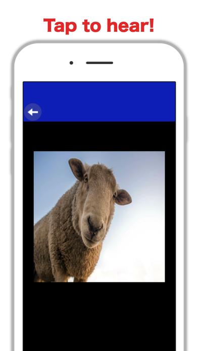 Country Zoo: Farm Animal Games 4