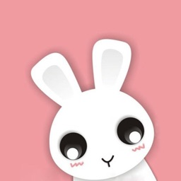 Cute Rabbit Kawaii Stickers