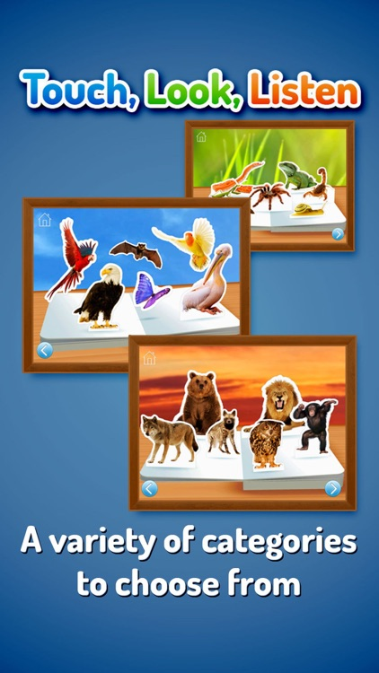 Zoo Animals ~ Touch, Look, Listen screenshot-3