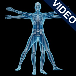 Animated Physiology & Anatomy