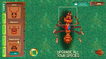 Ant City Colony Evolution screenshot four
