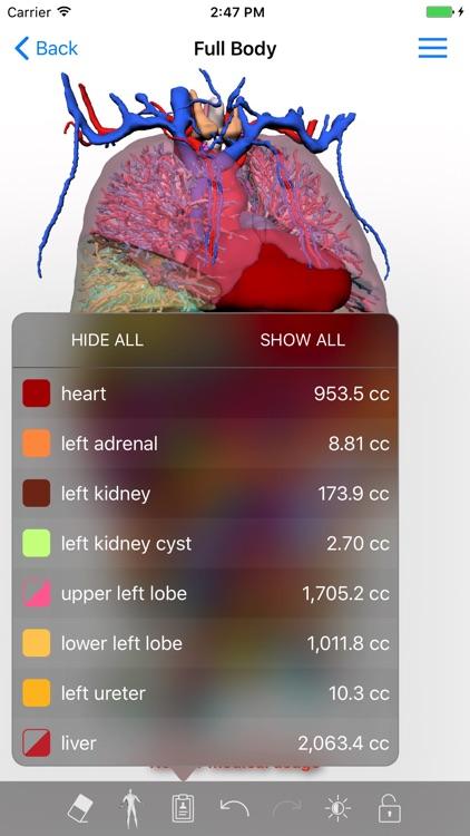 VP Planning screenshot-4