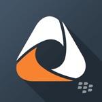 Hack BlackBerry Access