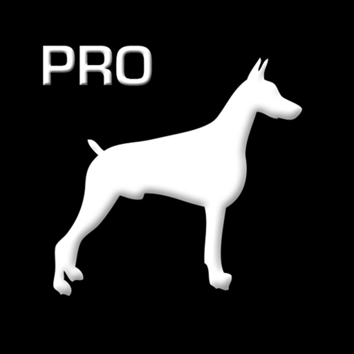 TOUGHDOG VIEWER PROFESSIONAL