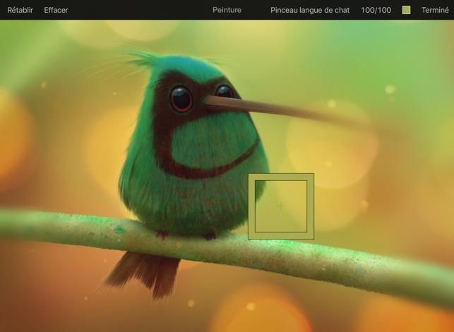 Pixelmator Capture d'écran