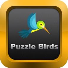 Activities of PuzzleBirds+