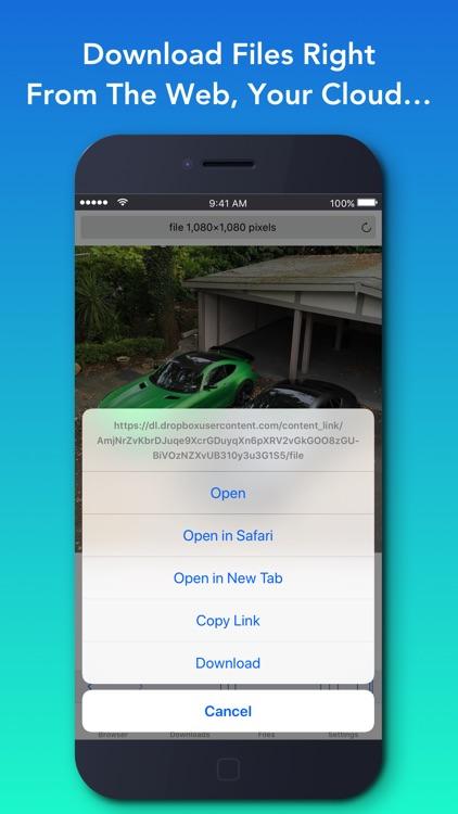 Offline - Files & Web Browser
