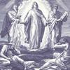 download Библейская история