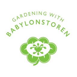 Gardening with Babylonstoren