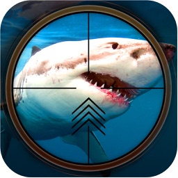 Wild Shark Hunter