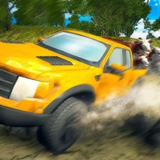 Activities of Offroad Delivery Simulator