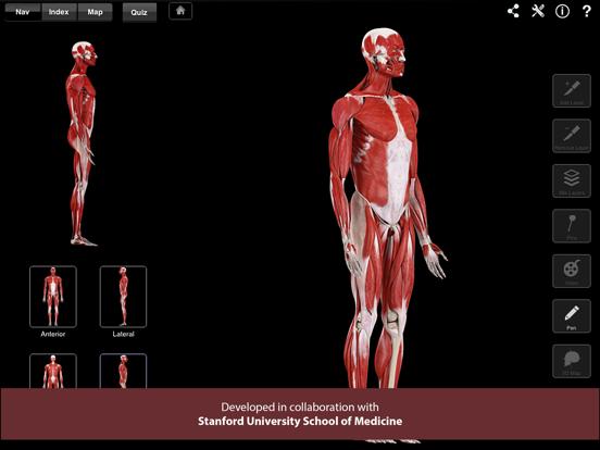 Muscle System Pro III Screenshot 0