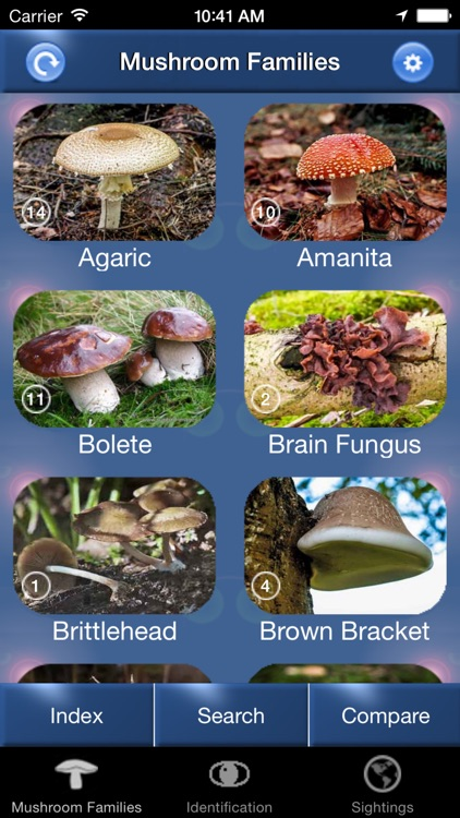 Mushroom Id North America screenshot-0
