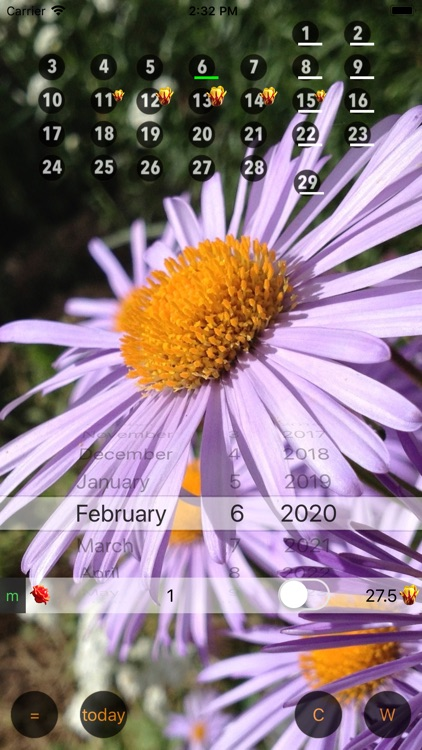 Only For Women - Calendar W screenshot-4