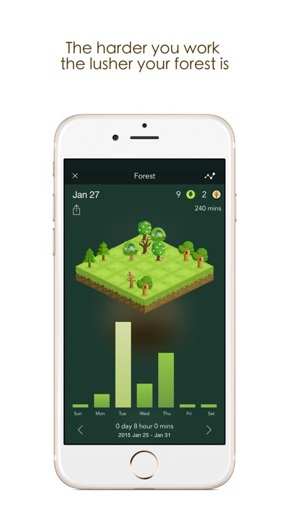 Forest by Seekrtech