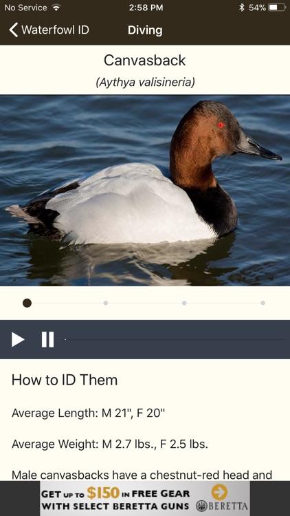 Ducks Unlimited screenshot-4