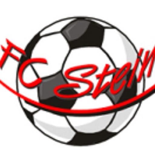 FC Stein 1962