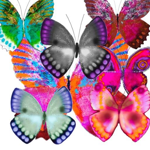 Haulwen Butterflies