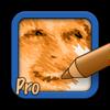SketchMee Pro