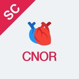 CNOR Test Prep 2018