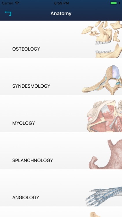 RF Anatomy
