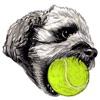Toy Poodle Dog Emoij Sticker Reviews