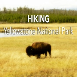 Hiking Yellowstone N. P.