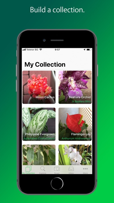 Screenshot for PlantSnap Pro: Identify Plants in South Africa App Store
