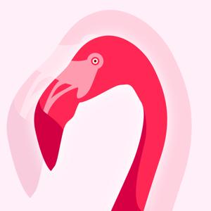 Flamingo - Customize Calls Lifestyle app