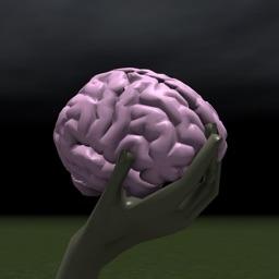 Brain Toss