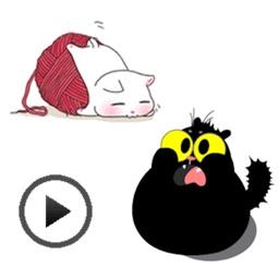 Animated Black Cat & White Cat