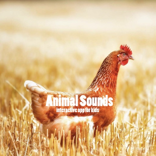 Animal Sounds for your baby